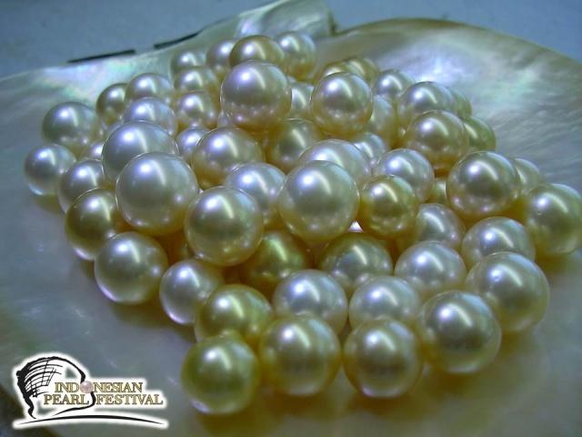 South Sea Pearl, Mutiara dari Laut Selatan Indonesia