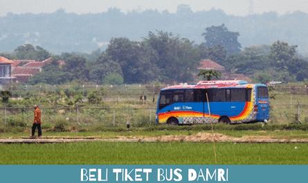 Beli Tiket Bus Damri