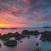 Segenap Papua untuk Kita